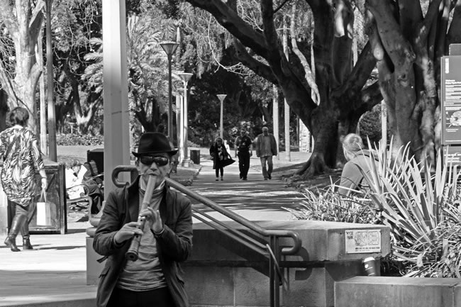 A busker in Hyde Park, Sydney, New South Wales, Australia