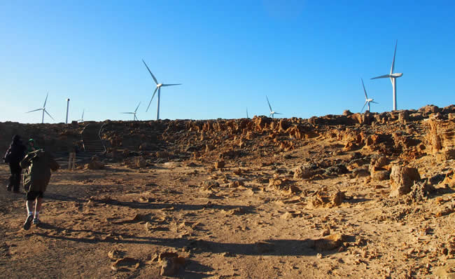 Fossil rocks, with wind turbines behind, at Cape Bridgewater near Portland, on Victoria's west coast, Australia